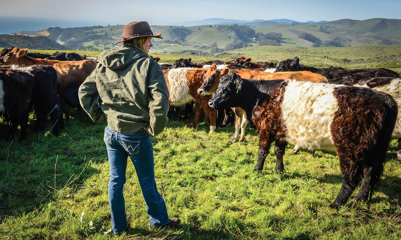 A Day on the Regenerative Ranch