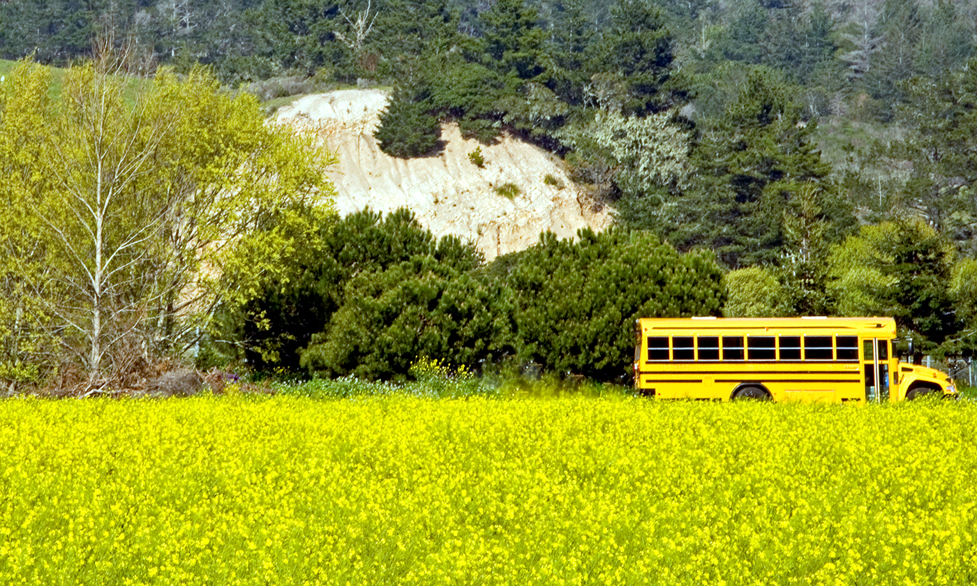 Next Stop for Retired School Buses: Tiny Houses for Homeless Families