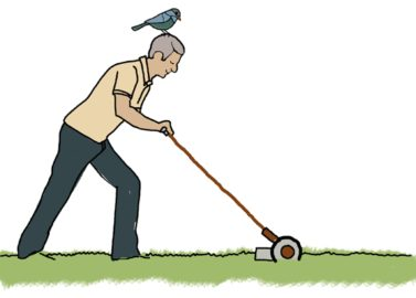 Push Mower Illustration