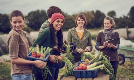 farm-co-op.jpg